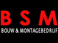 BSM.png